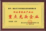 湖北省重点龙头企业